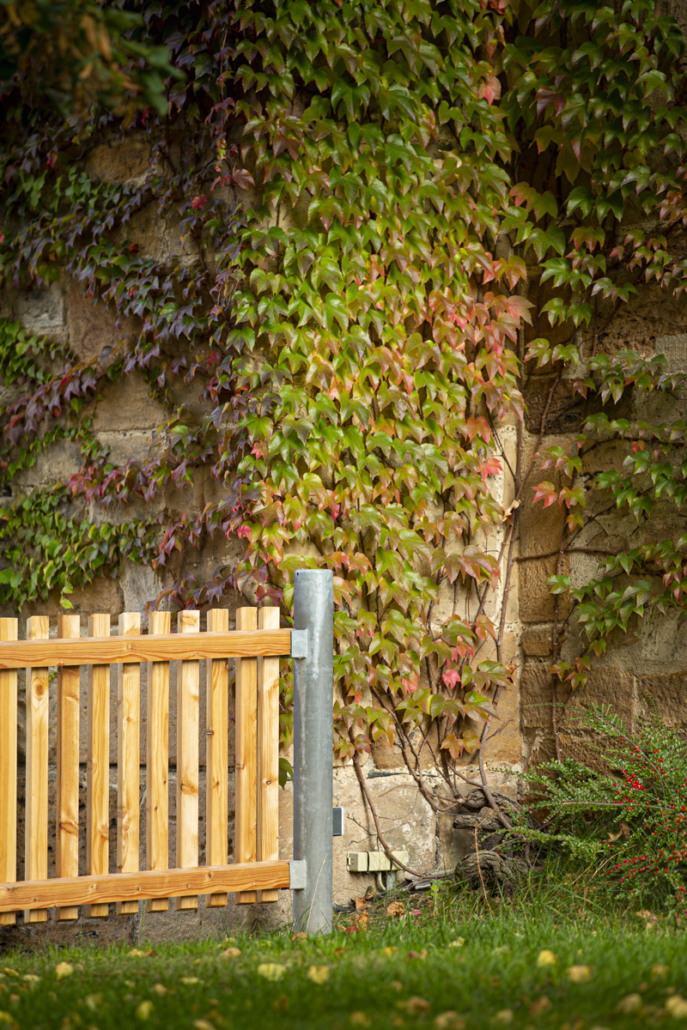 Gartenzaun Lärche Pfarrhaus Ebersdorf b. Coburg